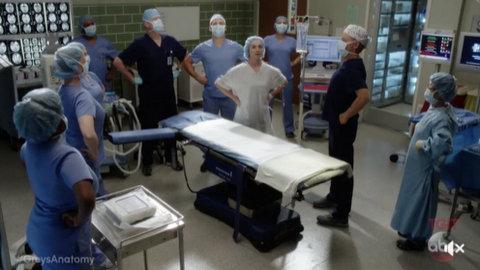 Grey's Anatomy: Ain't That a Kick in the Head (14x04)